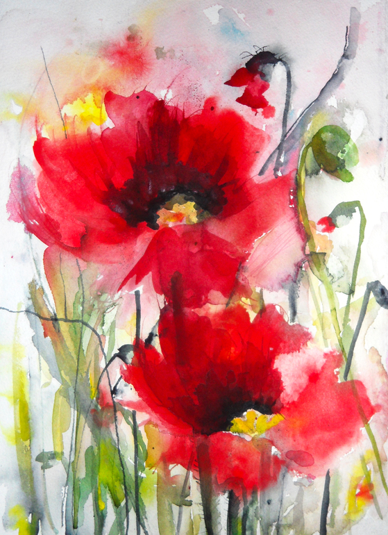 poppies iii sold browse art painting karin johannesson dreamy poppiesPoppies Watercolor Painting