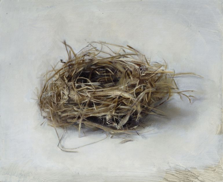 Nest, Christopher Gallego