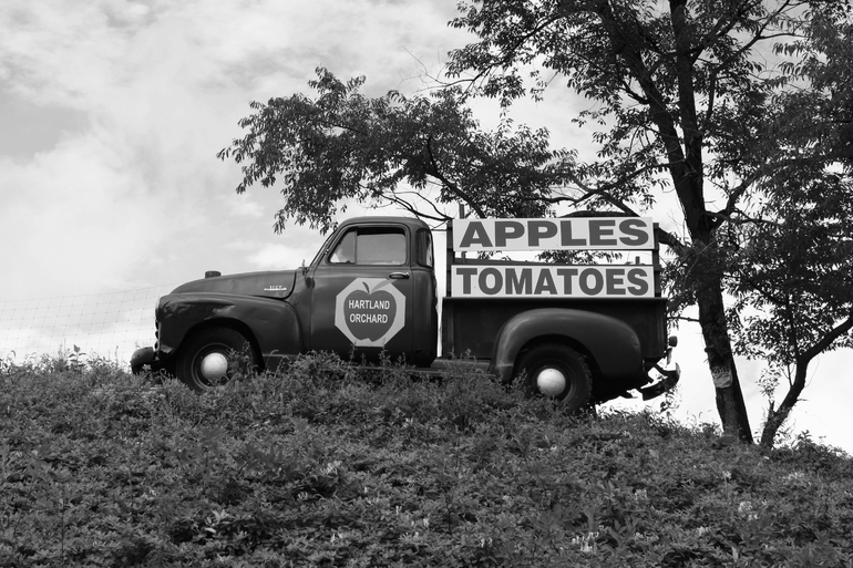 Apples & Tomatoes, Eric Buechel