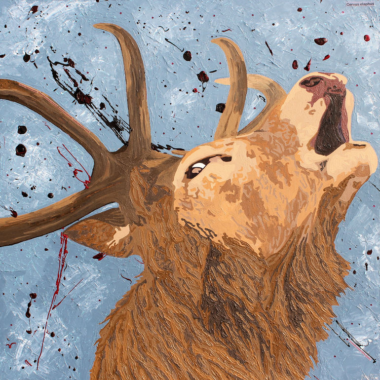 Red Deer Stag , Claire Milner