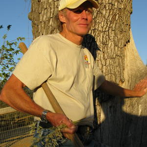 Robert Chapman's Profile