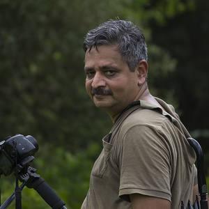 Aneesh Kotwal avatar
