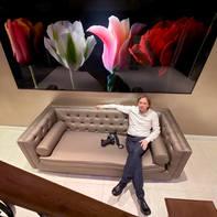 Tulipmania Art
