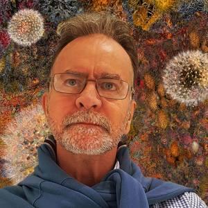 David Mangin's Profile
