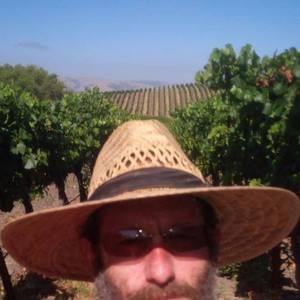 Josh Stein's Profile