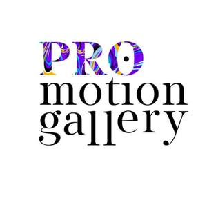 Promotion Gallery's Profile