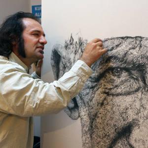 Ali Zulfikar Dogan's Profile