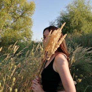 Carmen Sarbu's Profile