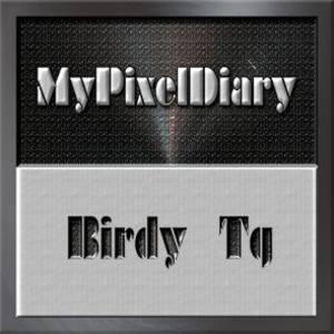 Birdy Tg