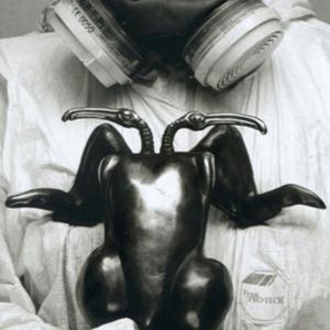 Marian Fountain's Profile