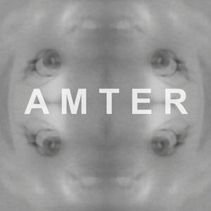 Michael Amter's Profile