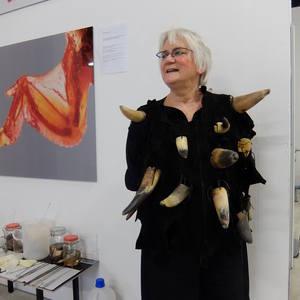 Anita Werner's Profile