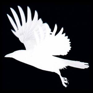 Faustus Crow