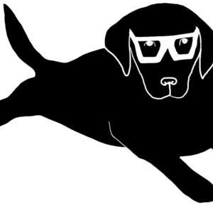 docsurfdogx ---'s Profile